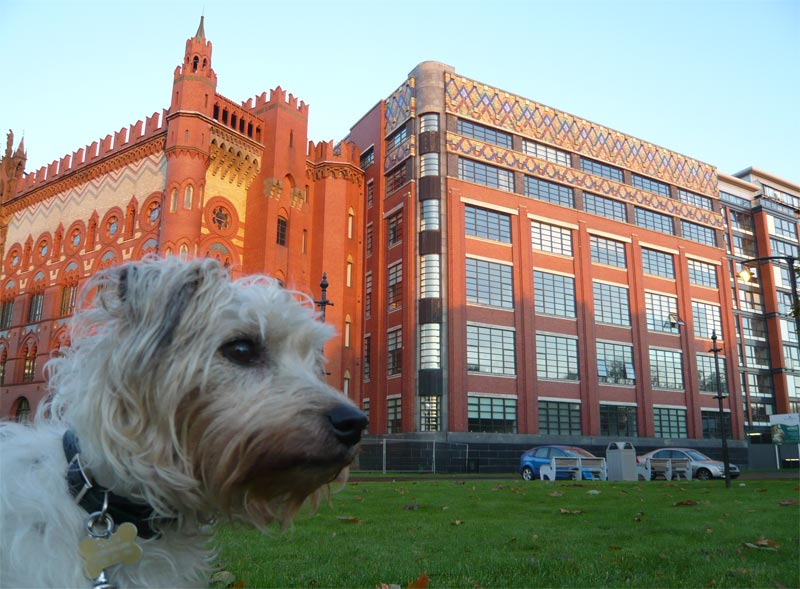 Templeton Carpet Factory