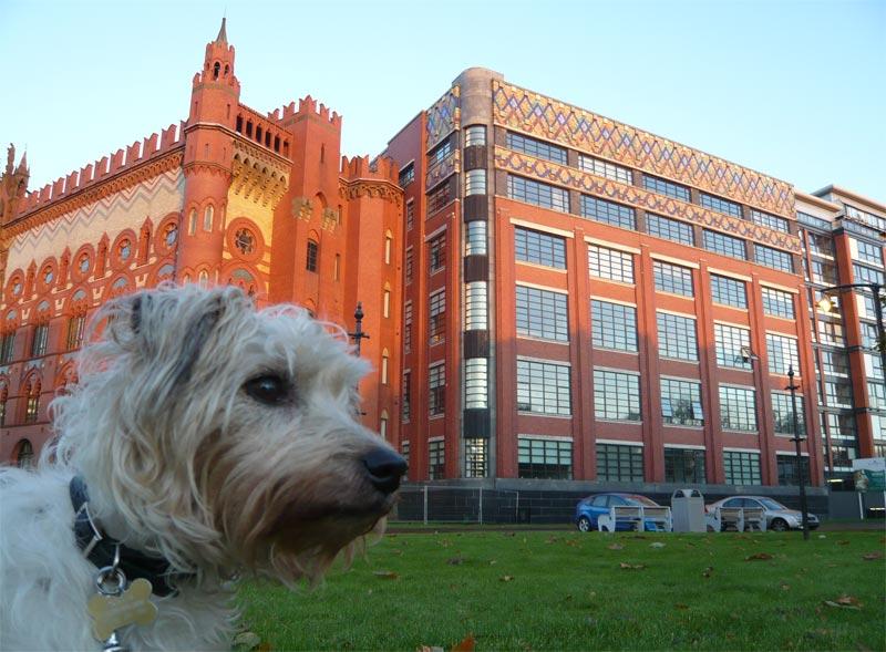 Templeton Carpet Factory