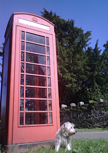 K6 telephone box and the Fortingall Yew tree