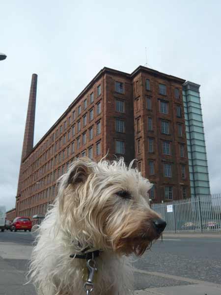 Carlisle mill and chimney