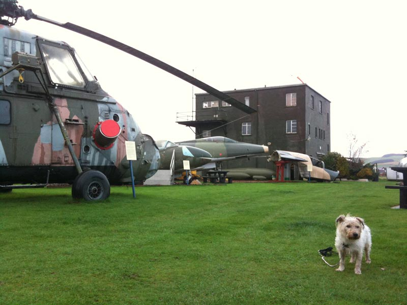 Pickles at dumfries airfield